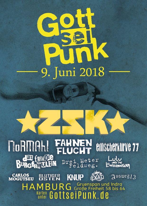Gott sei Punk Festival 2018 in Hamburg, Konzert, 09.06.2018, Gruenspan - Copyright Christian Mehlaus, Bela Amadeus Beimer