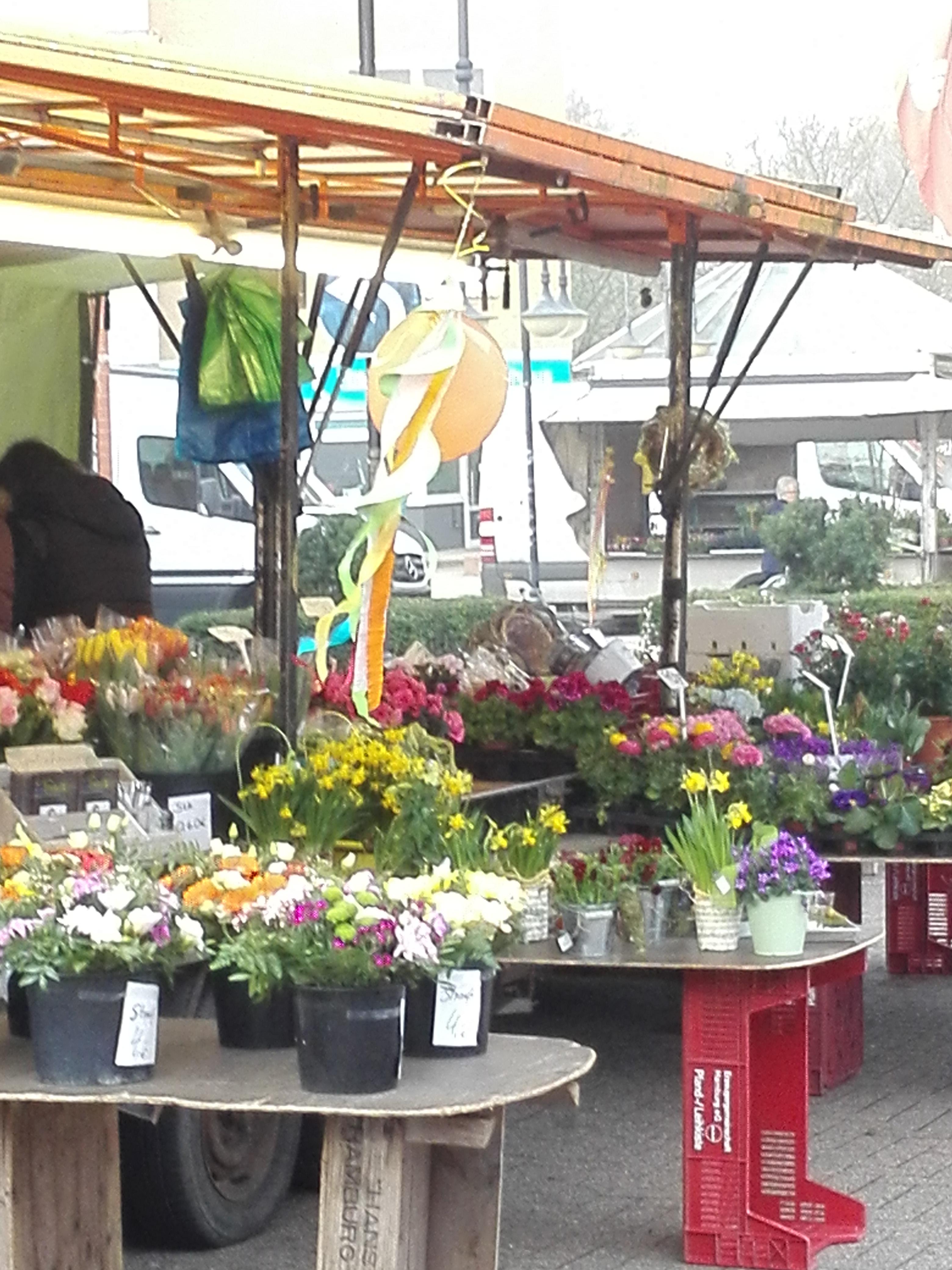 Frühling auf dem Lauenburger Wochenmarkt