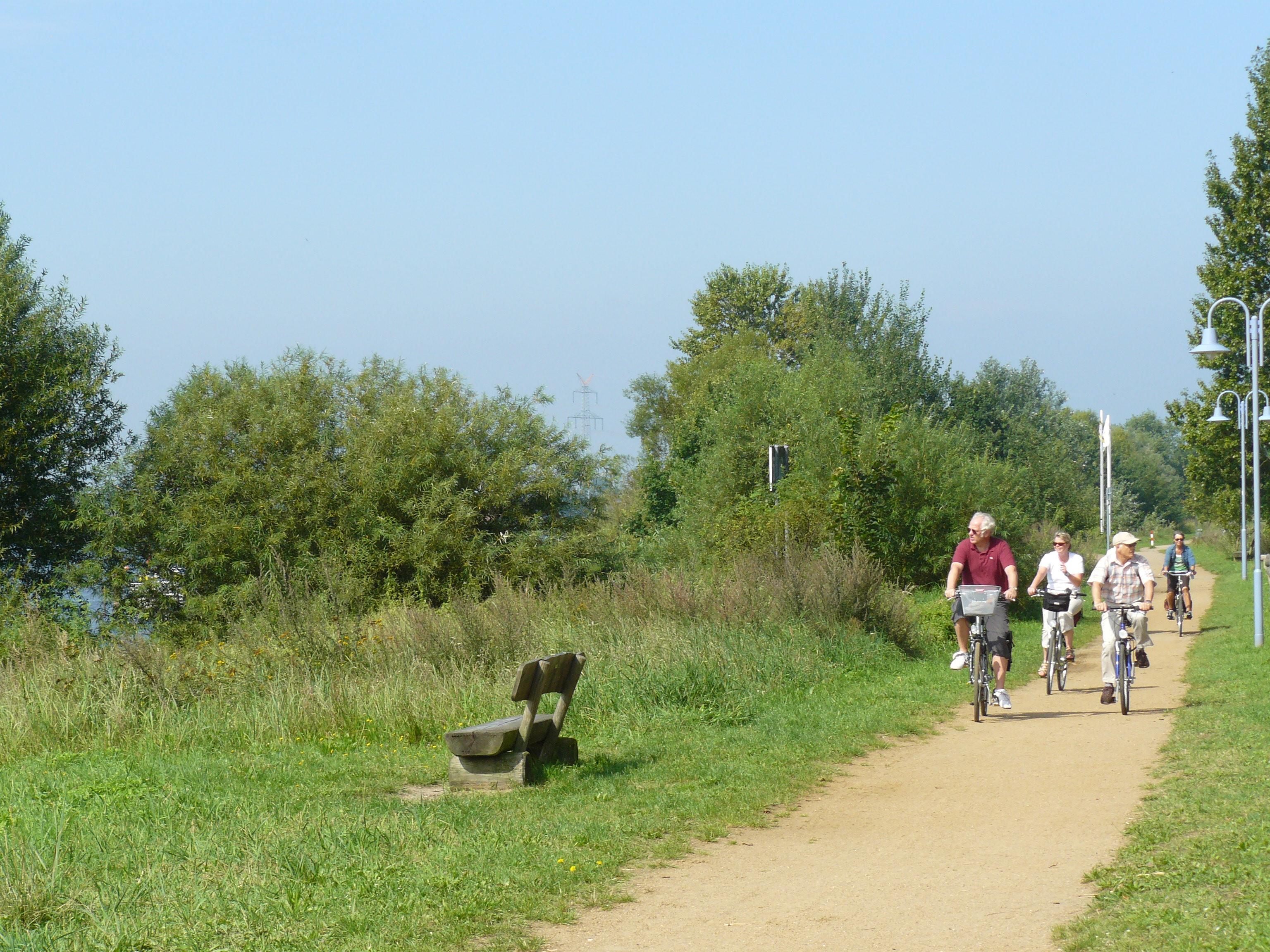 Radfahren an der Elbe