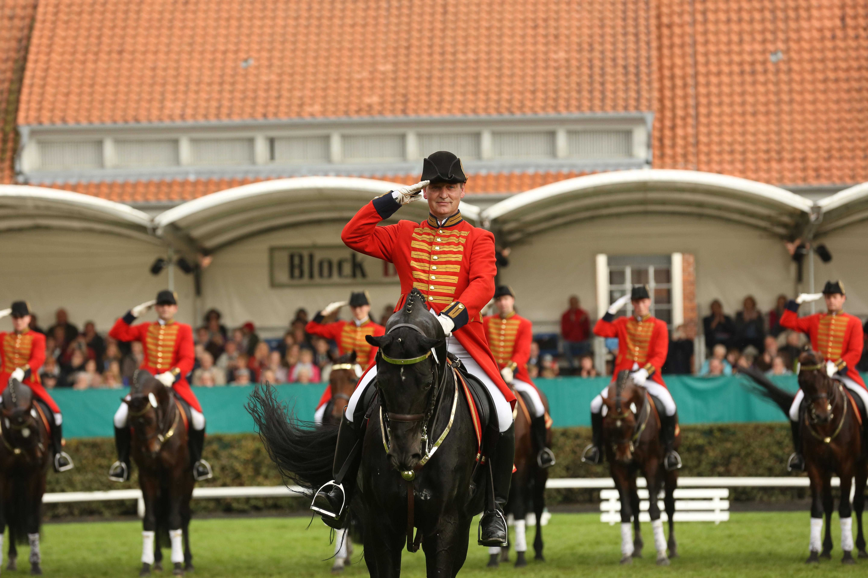 Reiter auf einem Pferd bei der Celler Hengstparade