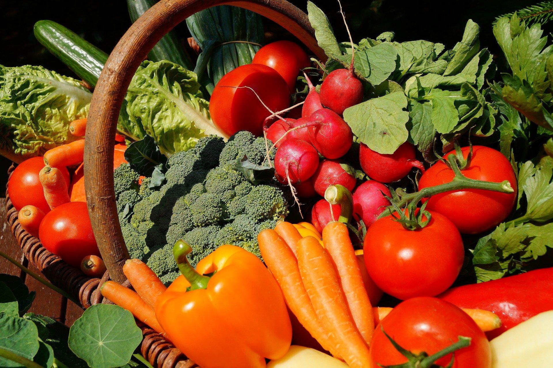 svenhilker_vegetables-3386212_1920