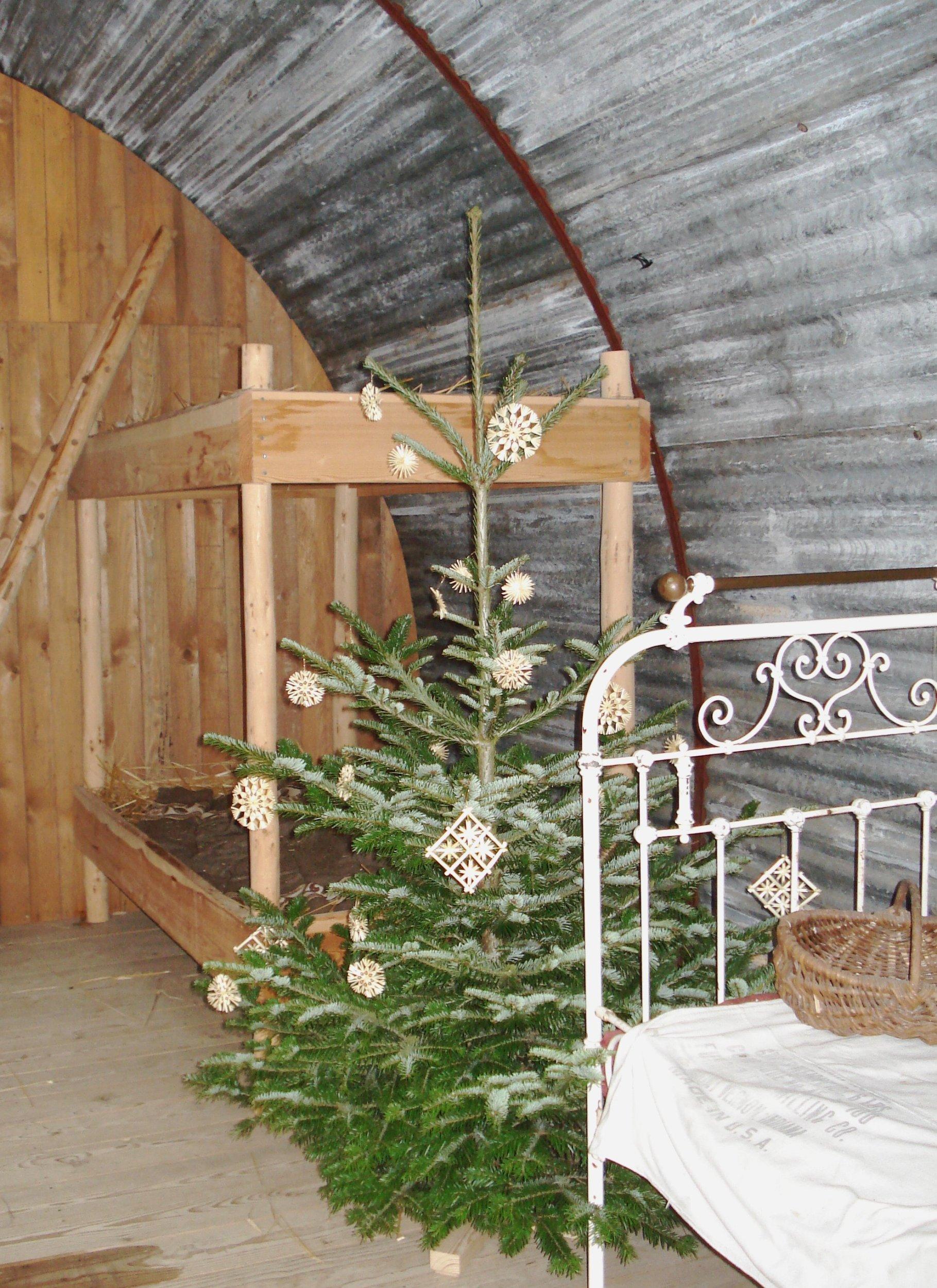 Weihnachten in Notzeiten